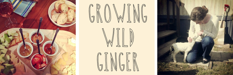 growing+wild+ginger.jpg