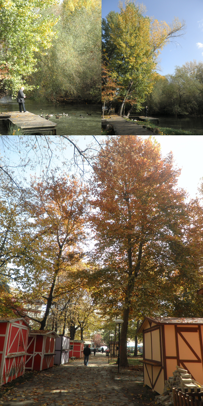 park+in+autumn4.jpg