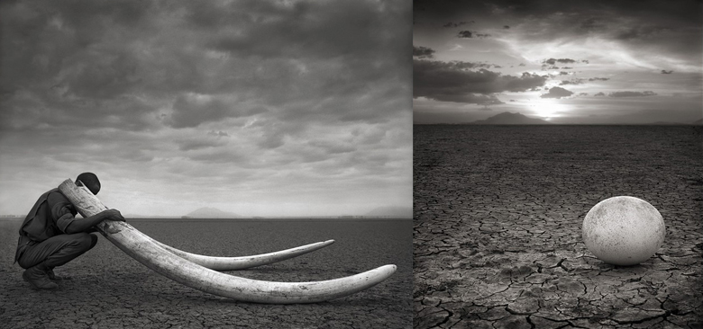 (left)  Ranger with Tusks of Killed Elephant, Amboseli, 2011 - (right) Abandoned Ostrich Egg, Amboseli, 2007