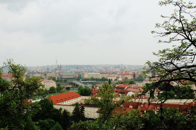 the view of Prague from the Charle's Palace