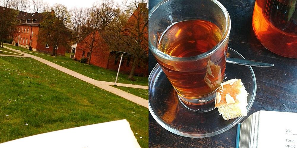 #readthatwhilestareat φωτογραφίες μου στο κάμπους του πανεπιστημίου στην Βρέμεη και στο Engel Weincafe στην Βρέμη επίσης