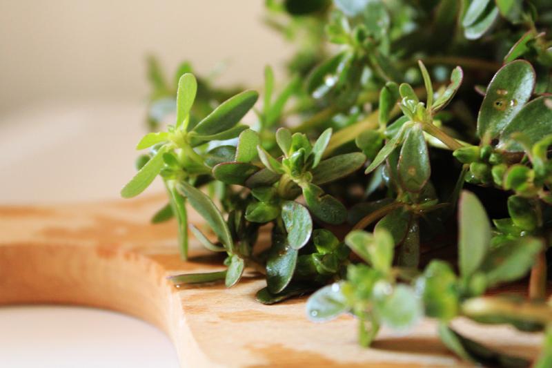 Πώς να φτιάξετε γλιστρίδες τουρσί