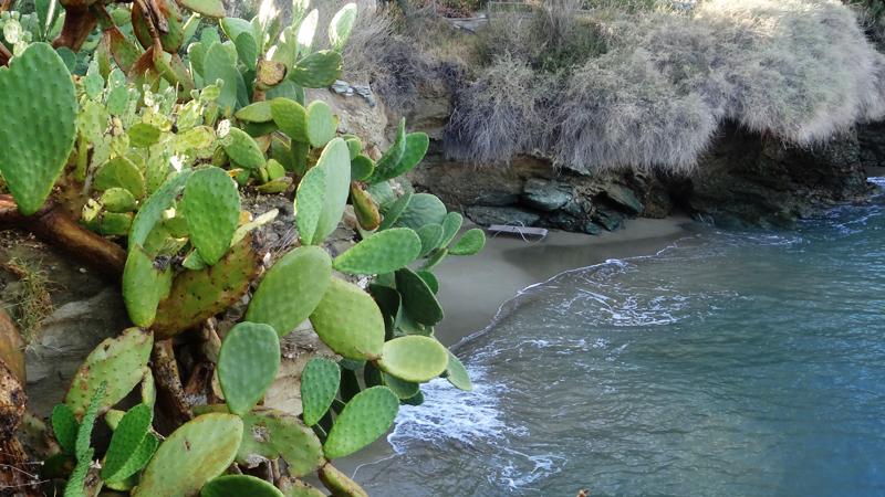 Agia Pelagia Beach Crete - Παραλία Αγίας Πελαγίας (9)