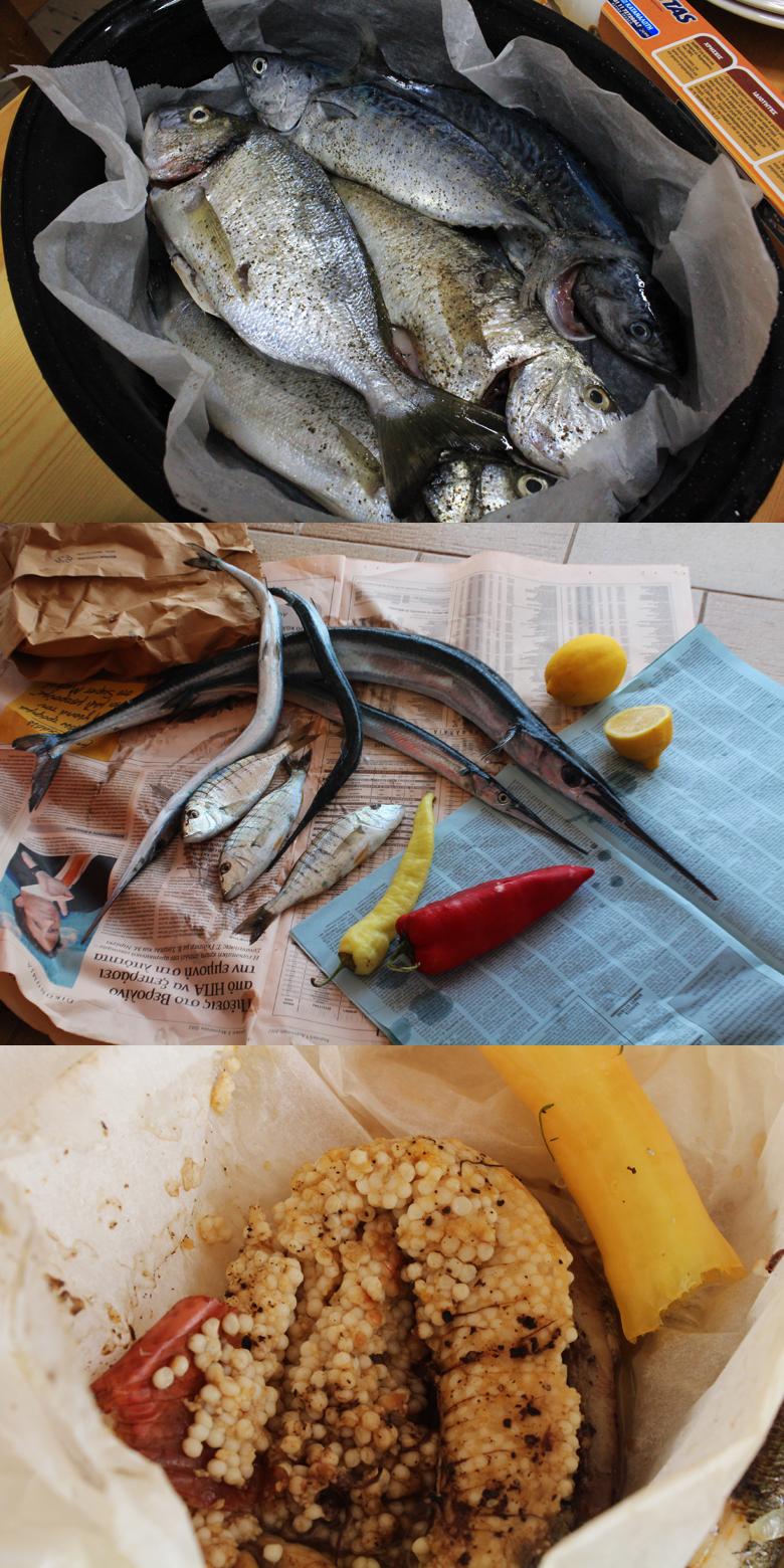 τα ψάρια του μπαμπά απο το ψάρεμα και χαβιάρι