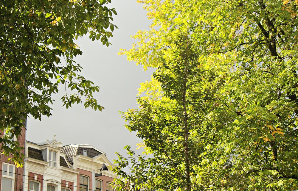 φθινόπωρο στο Αμστερνταμ.jpg