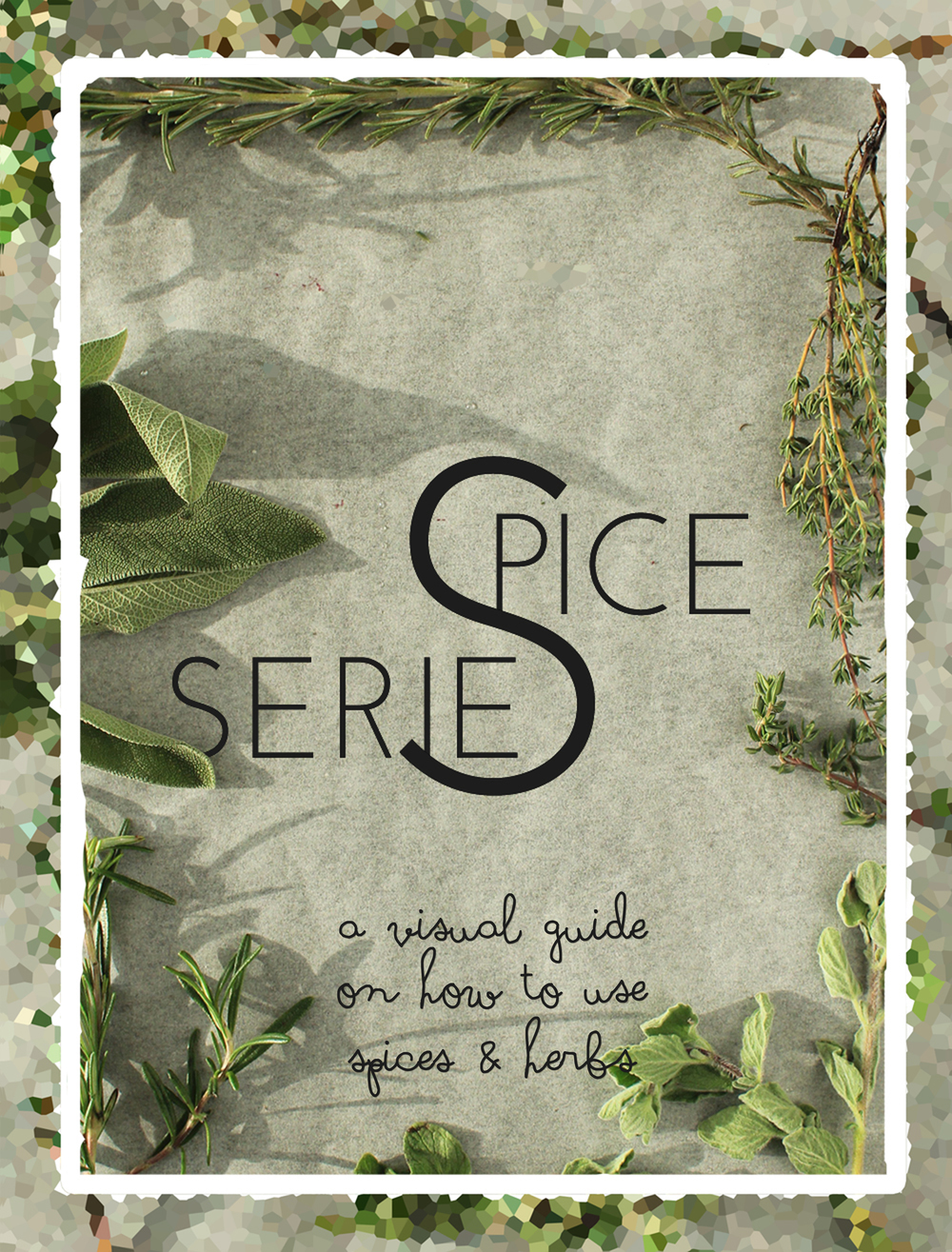 Spice Series: a visual guide on how to use your spices & herbs | In Whirl of Inspiration