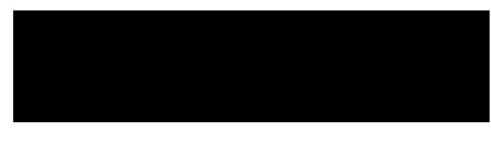 SW logo - BLACK.png