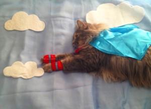 flying-cat-300x217.jpg