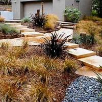 ornamental_grasses-200x200.jpg