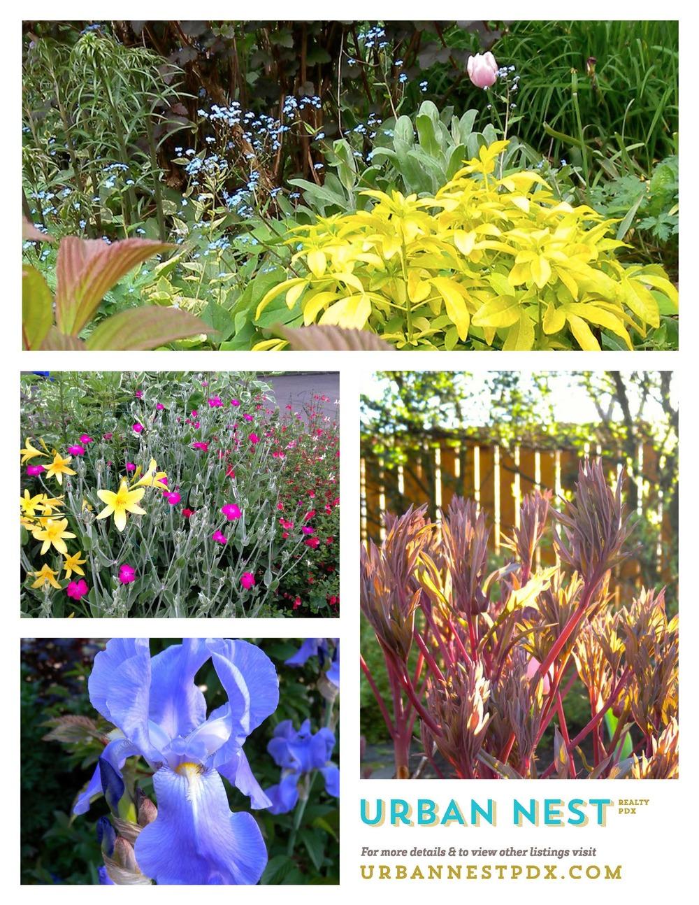 spring garden _Page_2.jpg