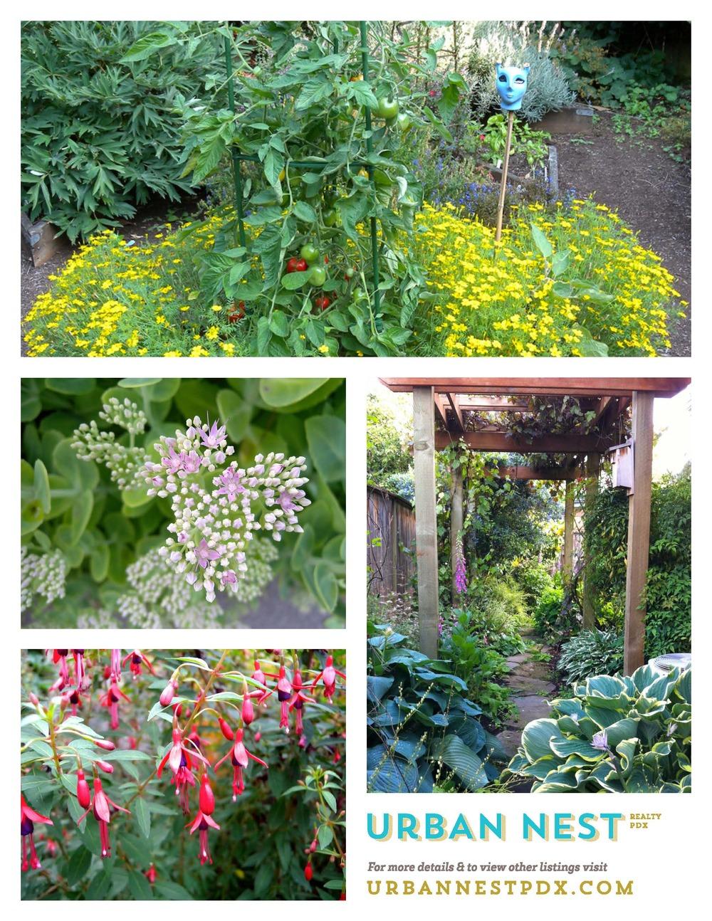 summer garden_Page_2.jpg