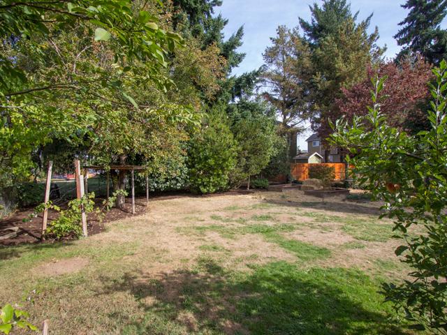 Emerson Yard Web.jpg