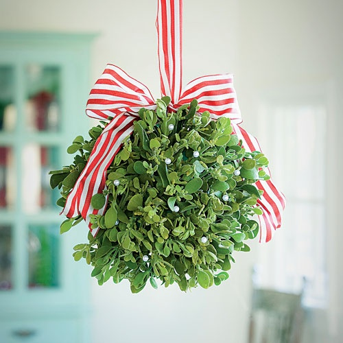 Be Sure to Hang Your Mistletoe High, Out of the Reach of Pets and Children