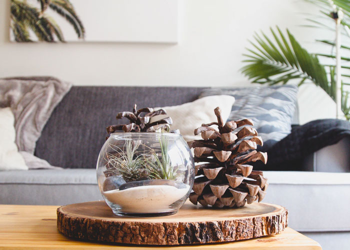 What You Can Expect From The Best Home Decor Stores In
