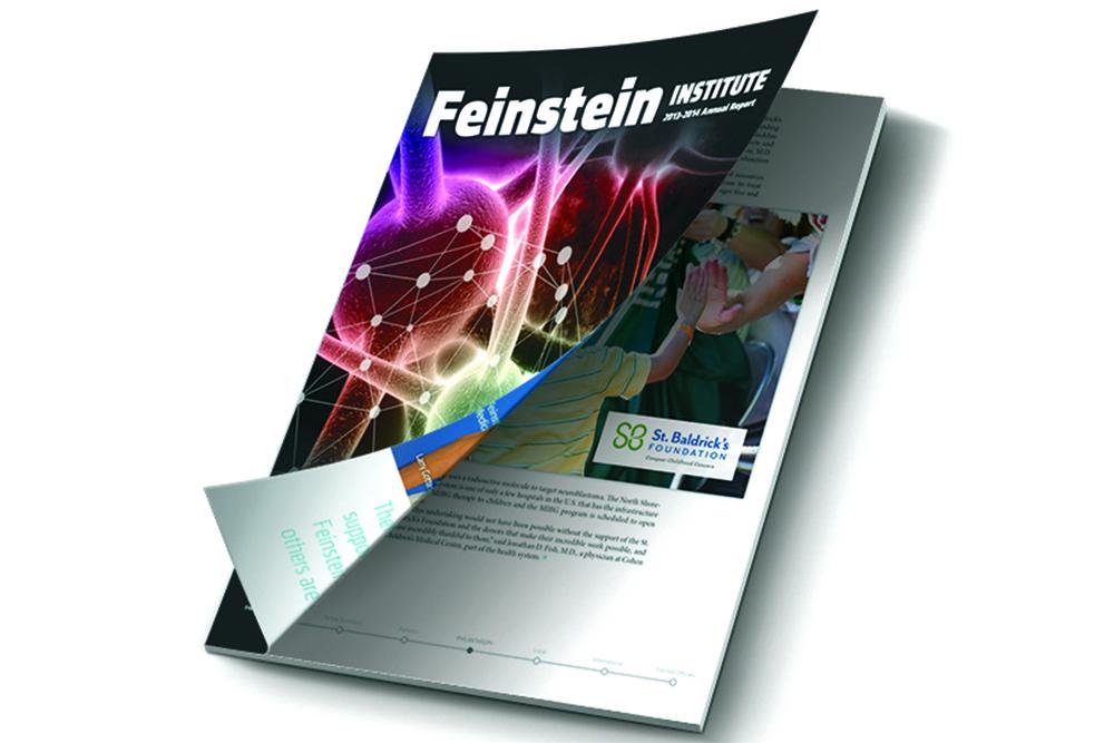feinstein_cover_mockup_1500pxw.jpg