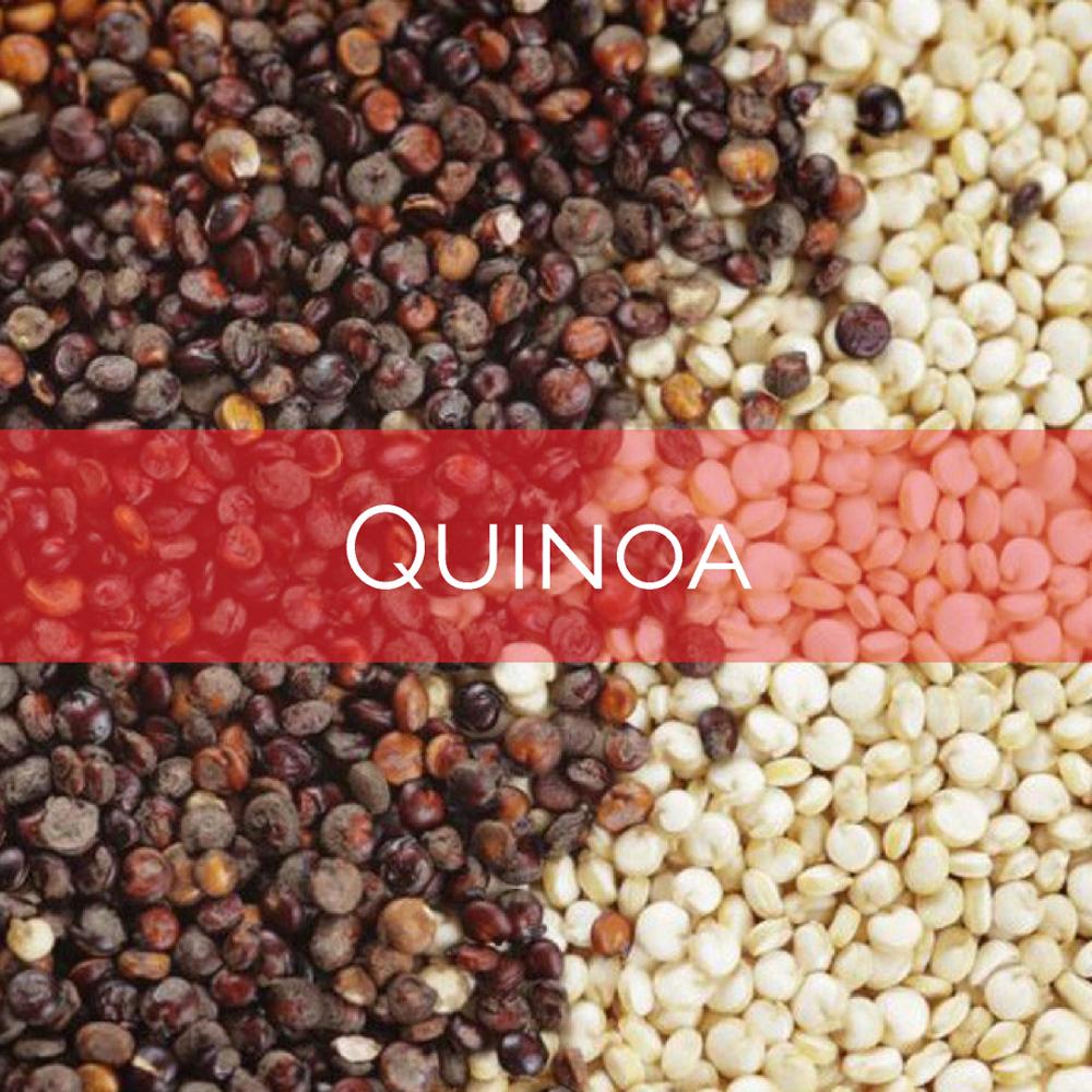 Quinoa  w. banner.png