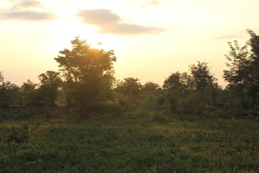 Sunrise in The Minefield Village, the last time I saw Srey Mom.