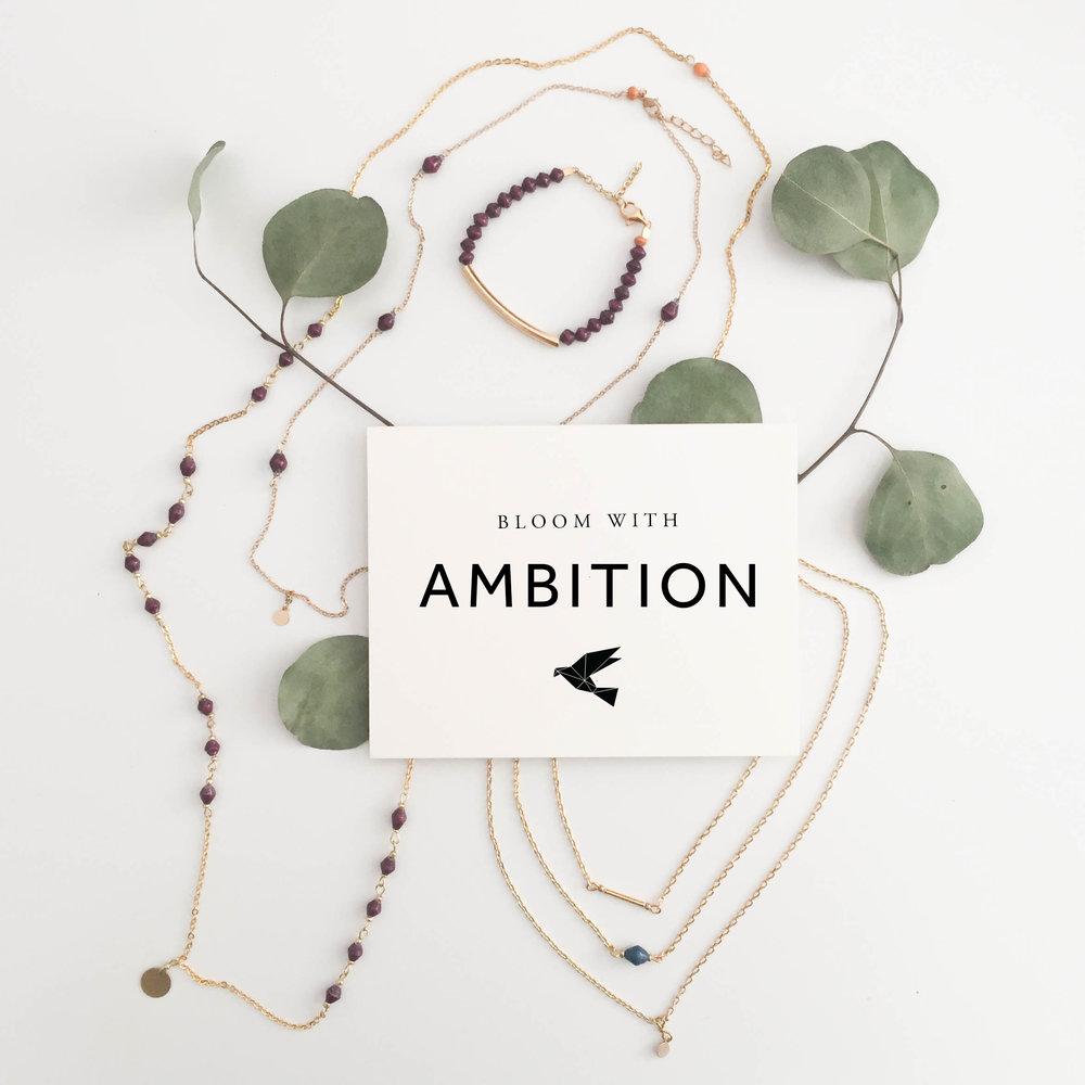 6-Ambition-4.jpg