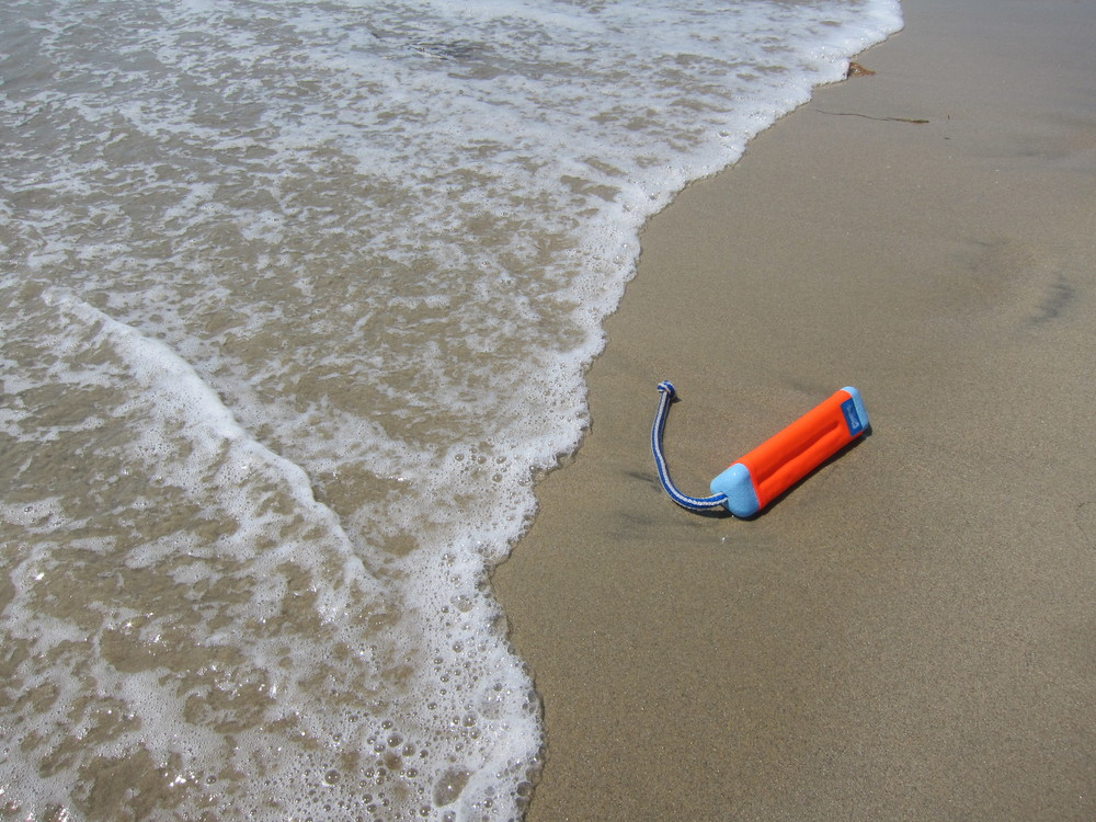 Don't: Slyly wander down the beach with a toy that doesn't belong to your dog.