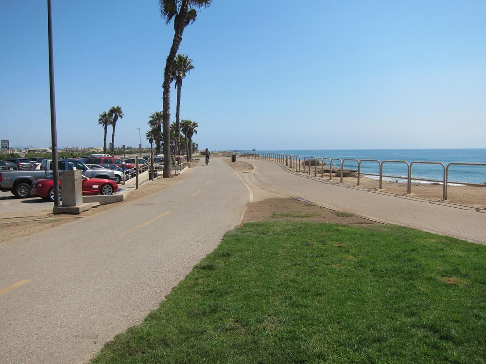 Don't: Walk your dog in the bike lane above Dog Beach.