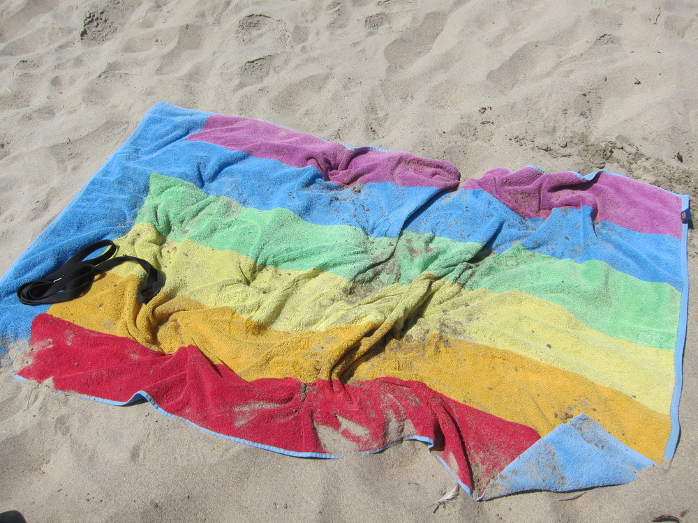 Don't: Get upset if you and your belongings are covered in sand, salt water and dog urine at the end of your beach day.