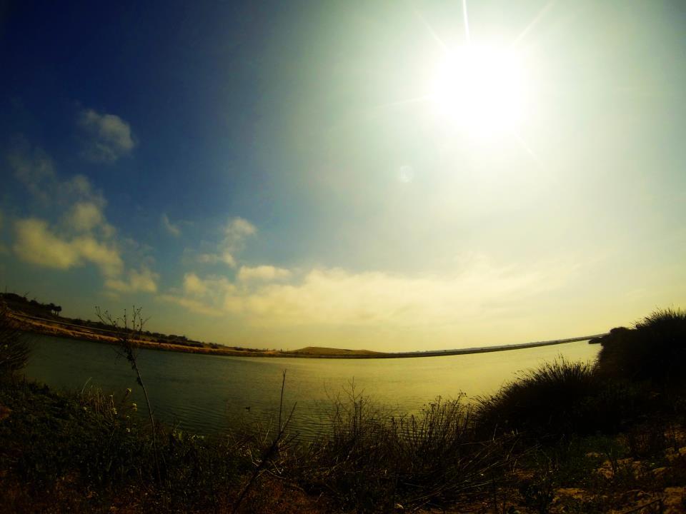 Bolsa-Chica-Wetlands.jpg