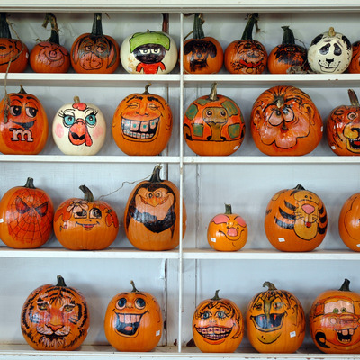 medium_painted_pumpkins.jpg