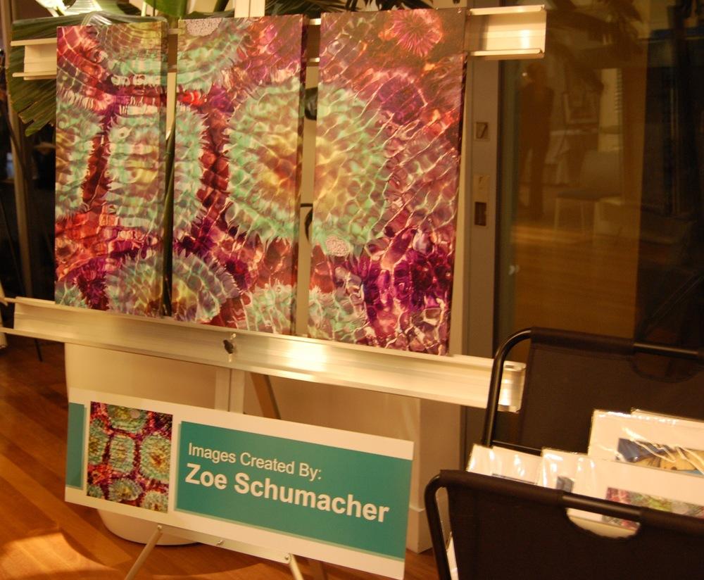 Zoe Schumacher  (Photo by Lauren Lloyd)
