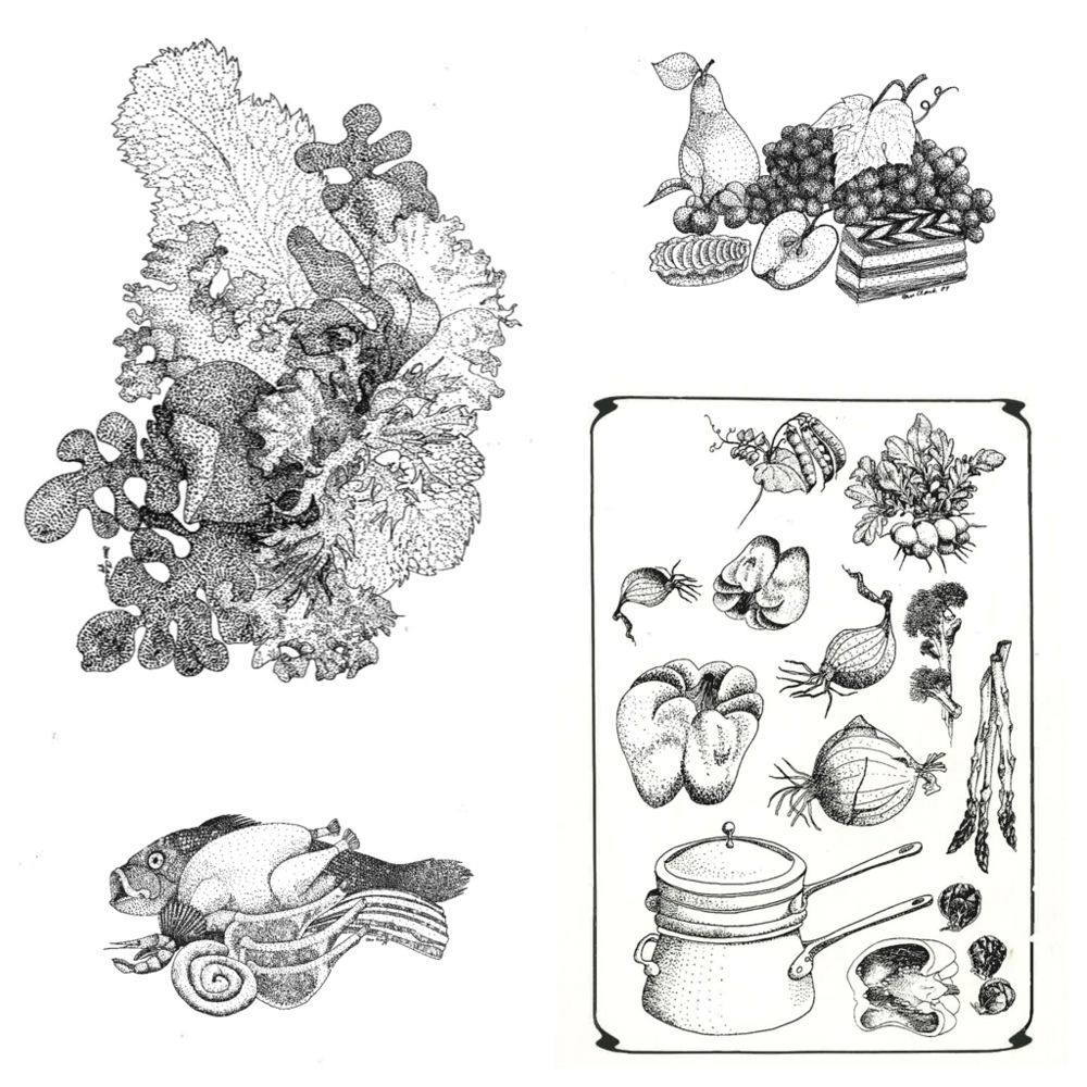 Drawings by Ann Clark  (Images courtesy of Ann's Honor)