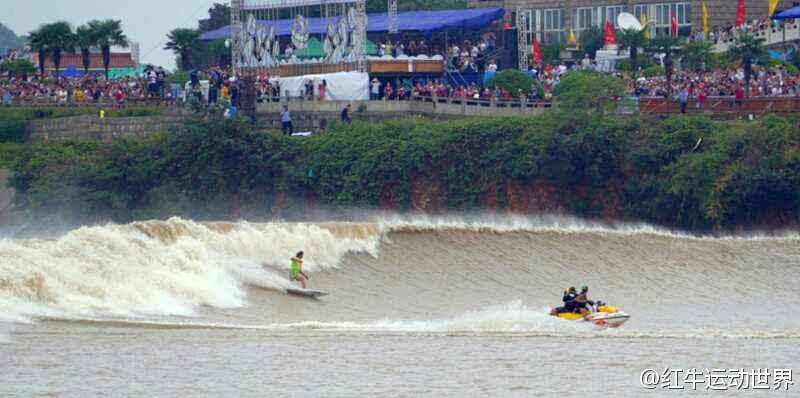 tidal wave tosh