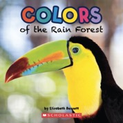 ColorsRainforest.jpg