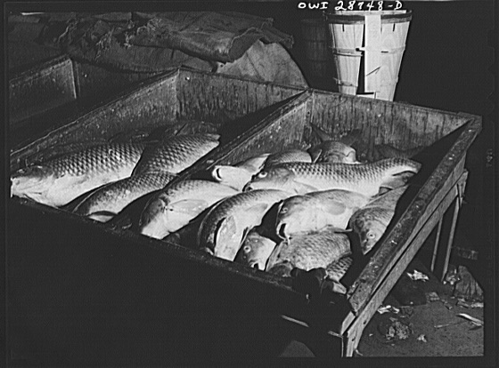 Cod fish at the Fulton Fish Market in NYC 1943, Library of Congress