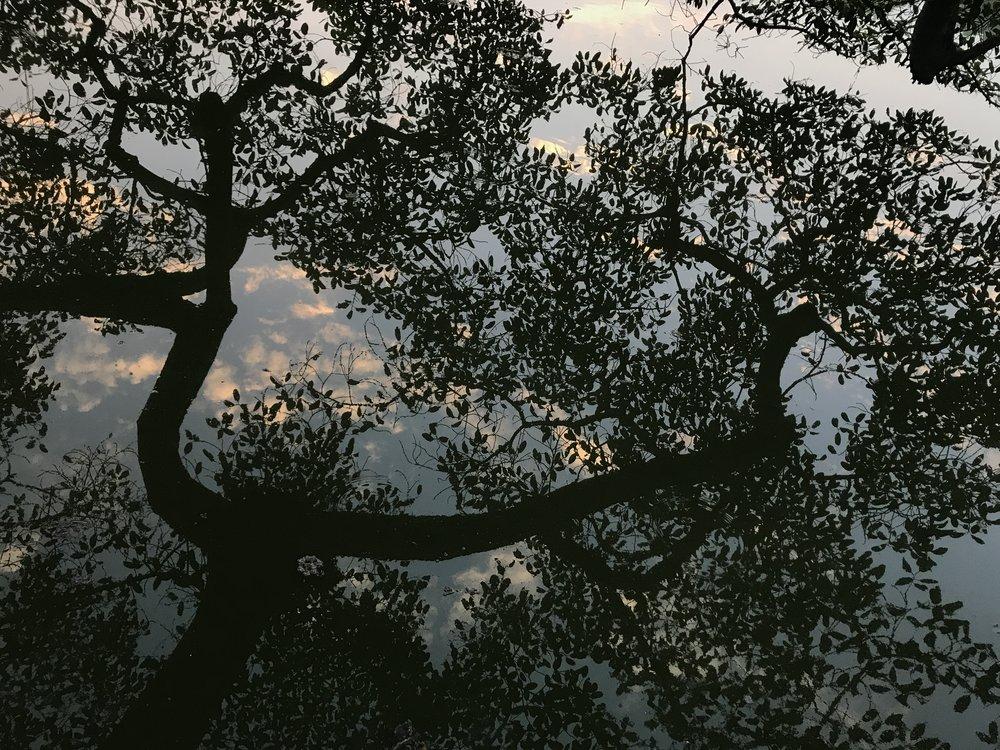 還劍湖,河內,越南。攝影/陳慧瑩