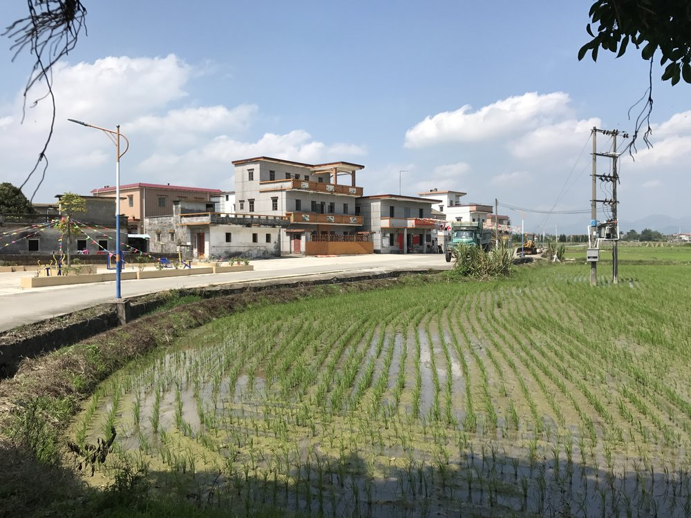 母親的故鄉,泰山,中國。攝影/陳慧瑩