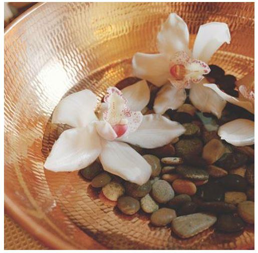 spa flower.JPG