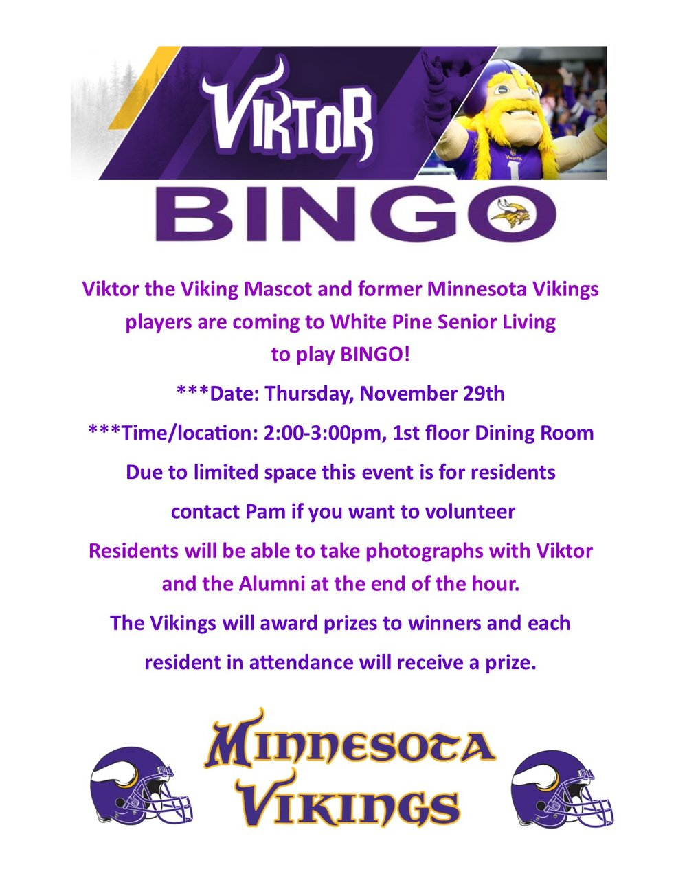 Vikings flyer2.jpg