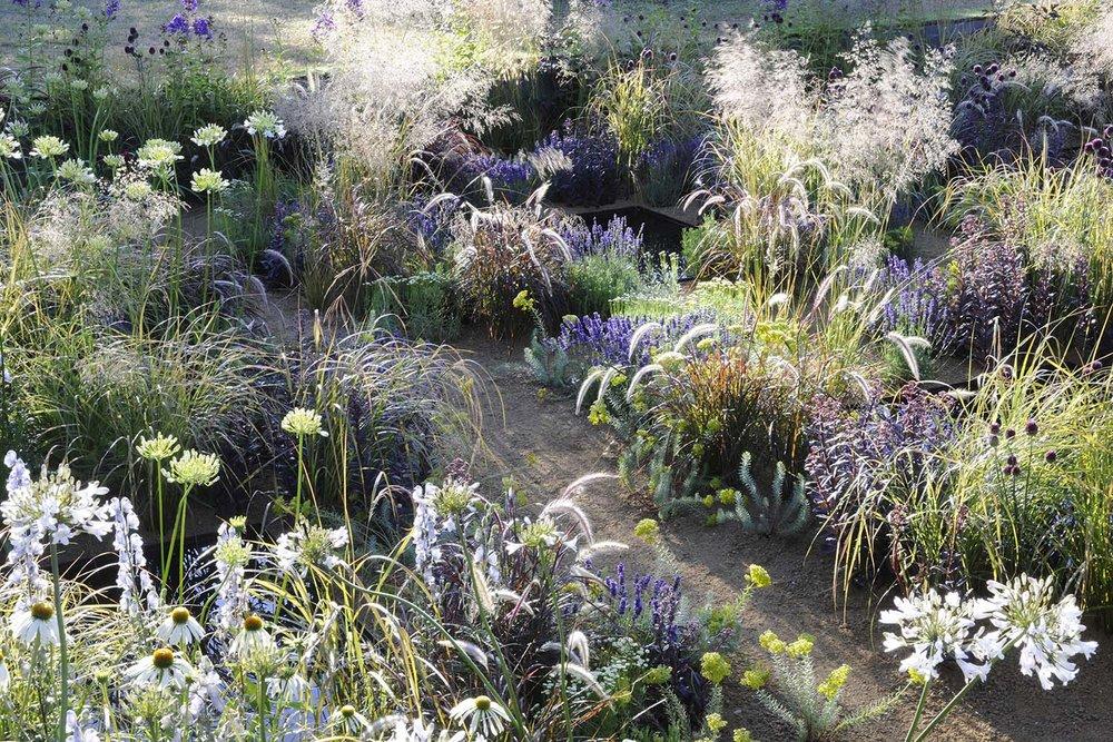 hampton-court-flower-show-garden-reflective-water-pools.jpg