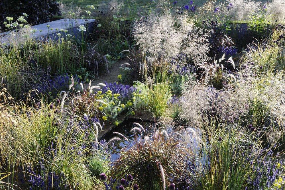 hampton-court-flower-show-garden-abstract-layout-perennials.jpg