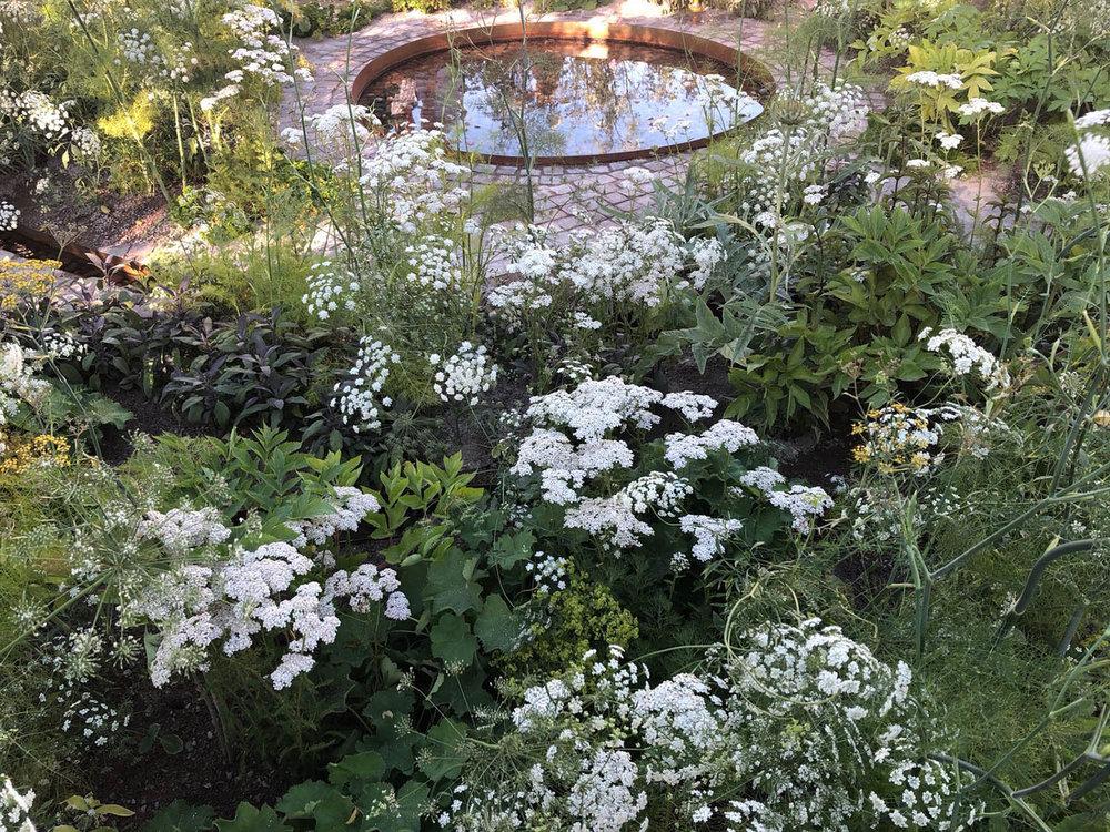 hampton-court-garden-composition-painterly-naturalistic-plant-tapestry.jpg
