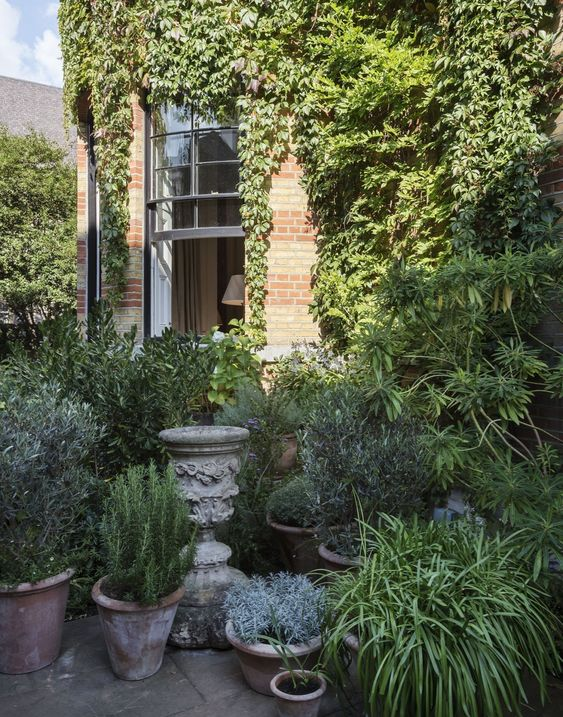 rose-uniacke-tom-stuart-smith-london-garden-courtyard.jpg