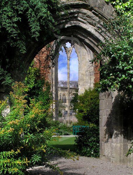 wells-cathedral-somerset-england-garden-wild.jpg