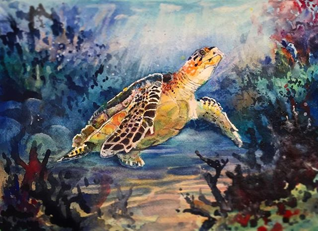 Cutie watercolour turtle commission