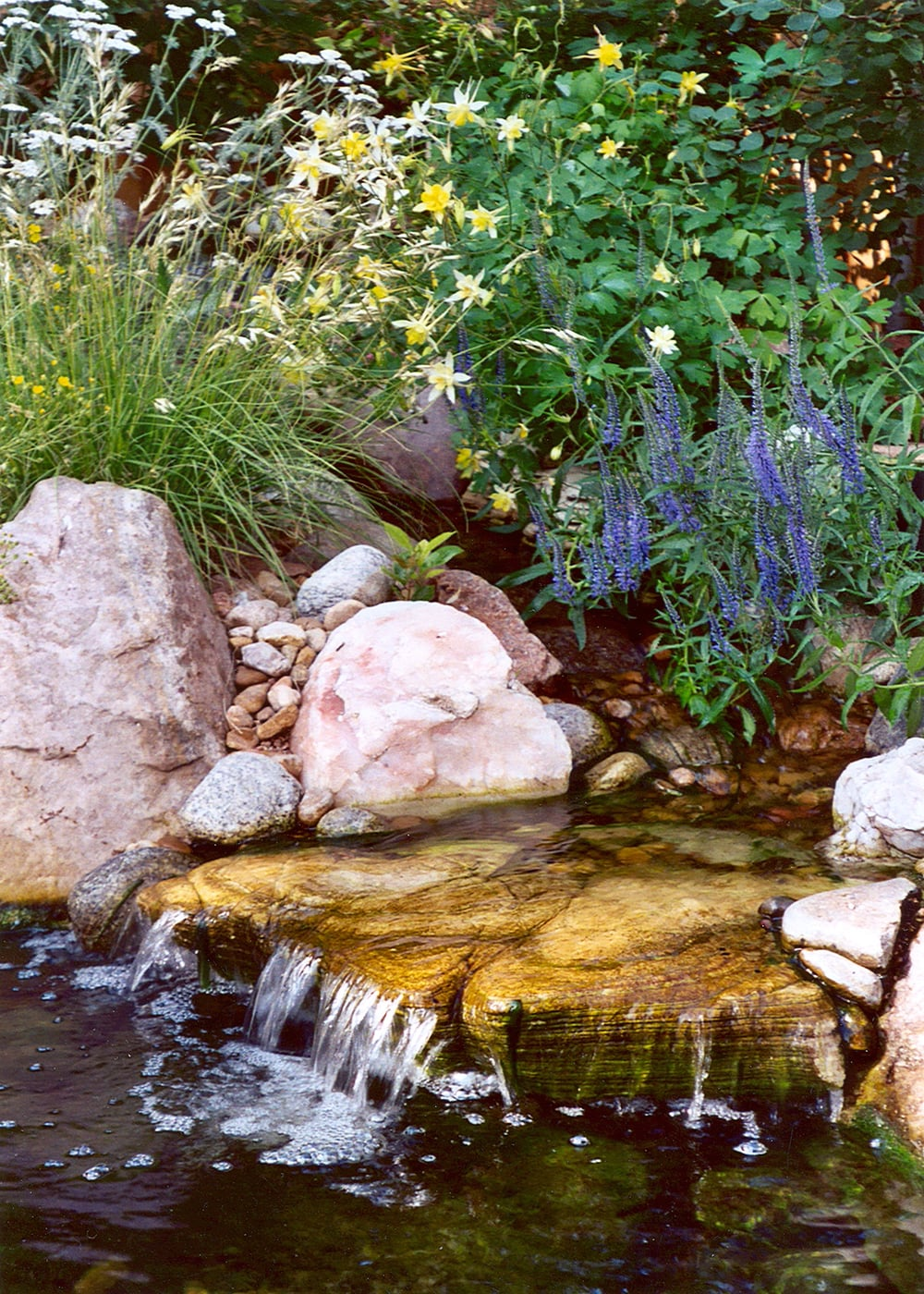 Natural Water Feature in West Washington Park
