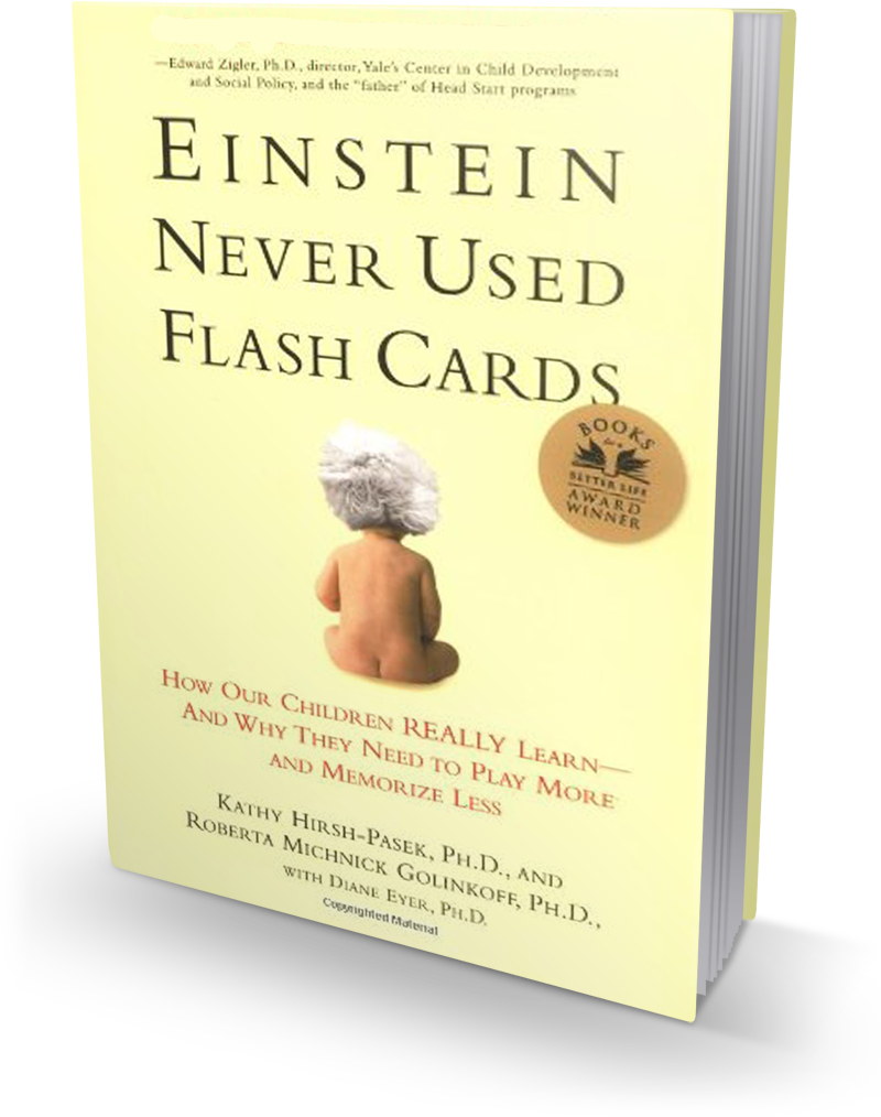 EinsteinNeverUsedFlashCards-3dLeft.png