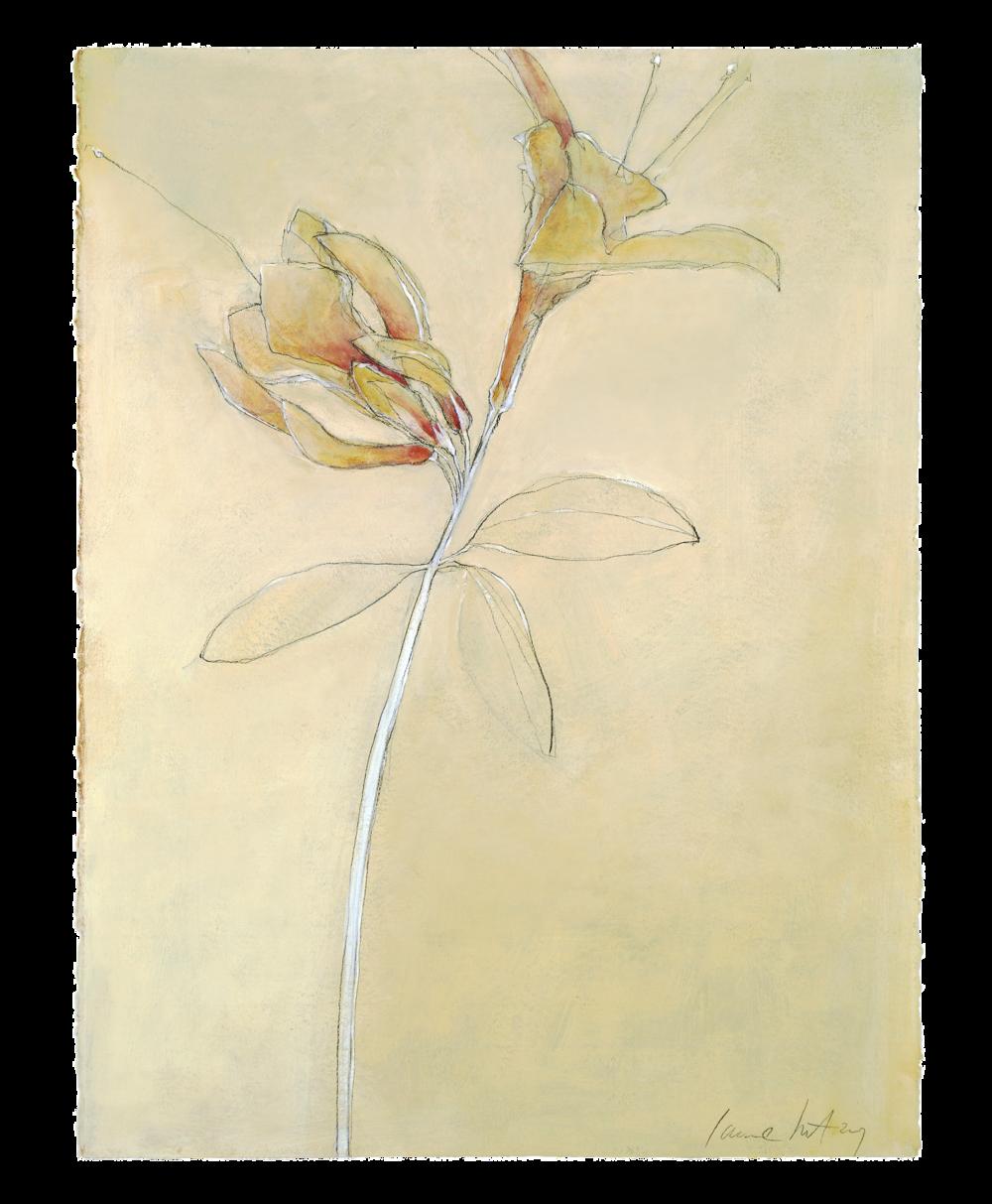 egon flowers 1