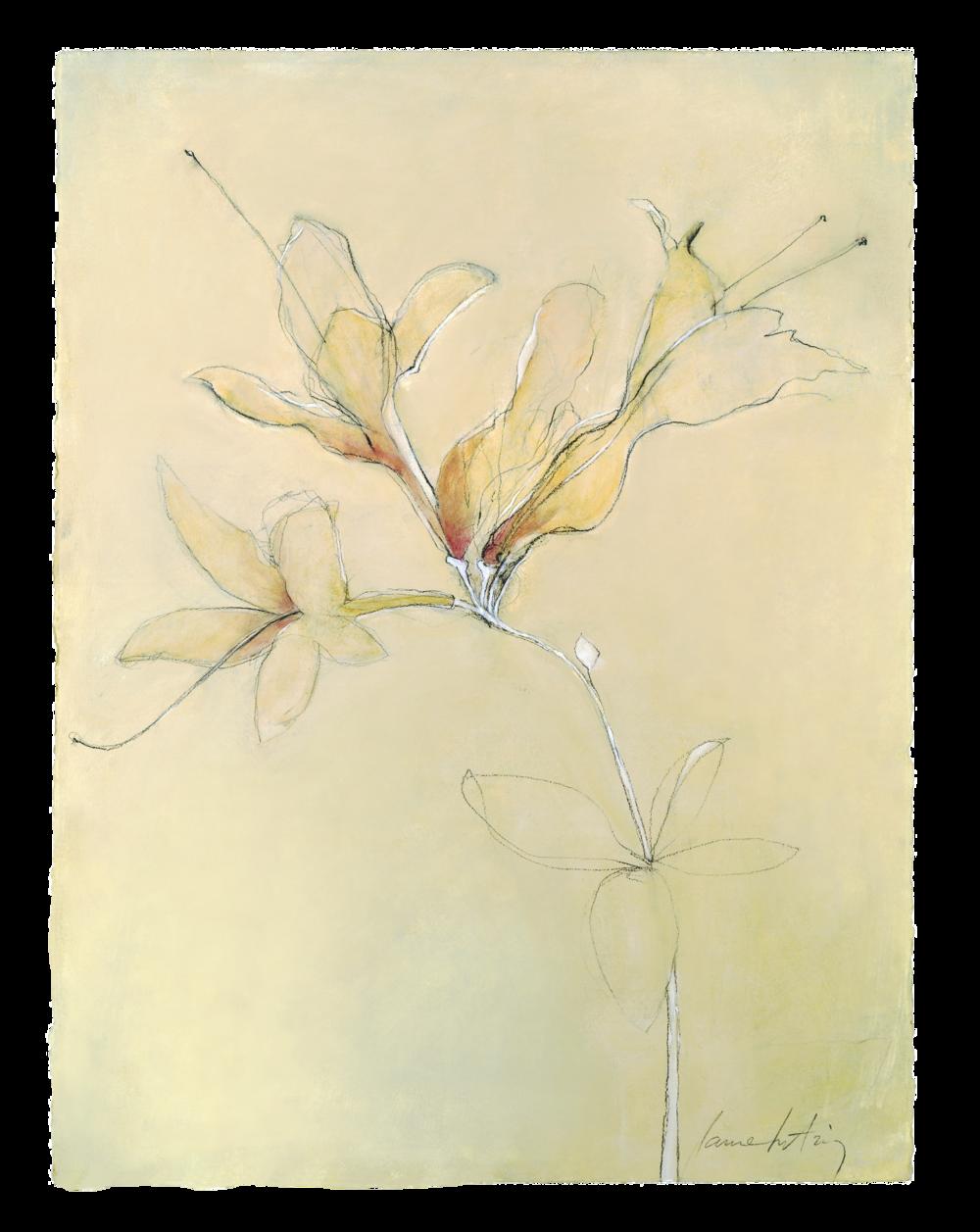 egon flowers 2