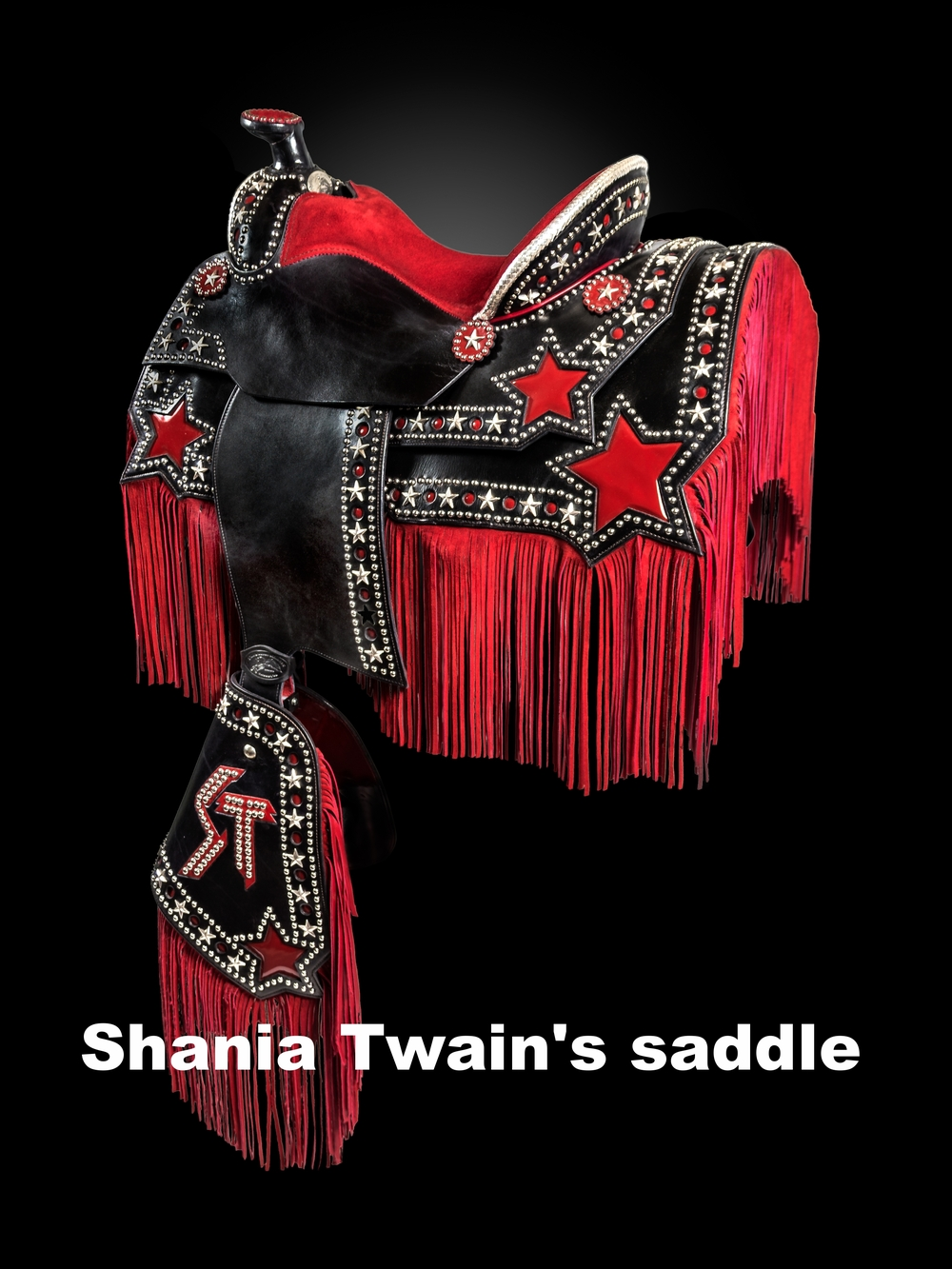 Shania Twain's farewell tour saddle