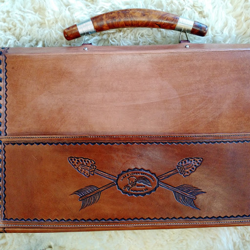 Buffalo skull briefcase - back.jpg
