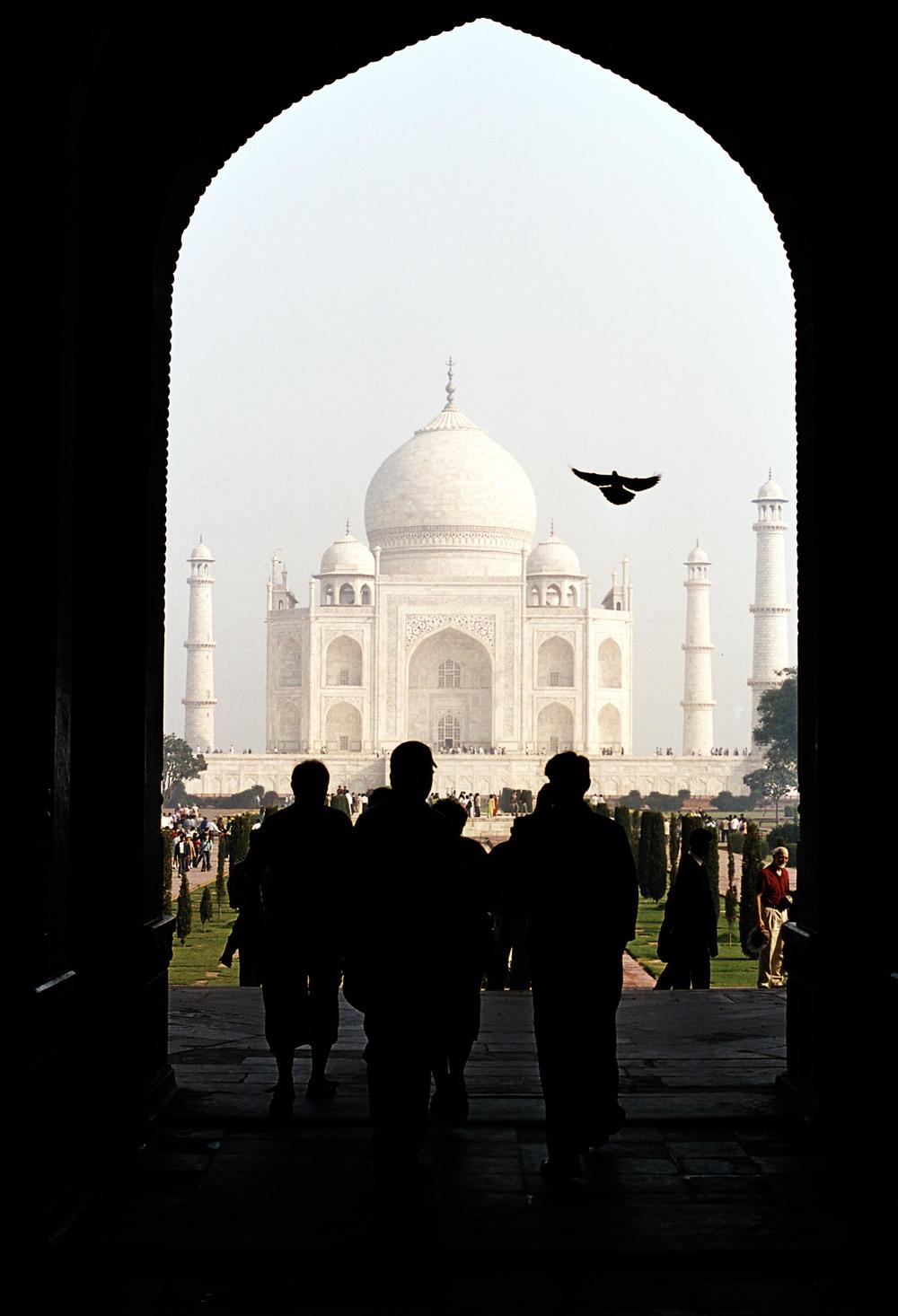 India website-10.jpg