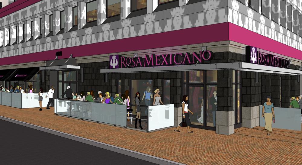 411_model-rosa-mexicano-c.jpg